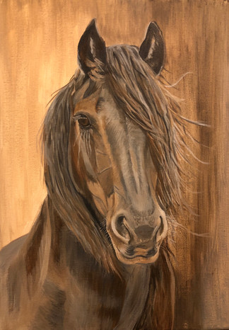 Horse on A3 canvas