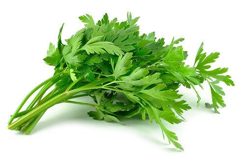Parsley- Flat leaf (French)
