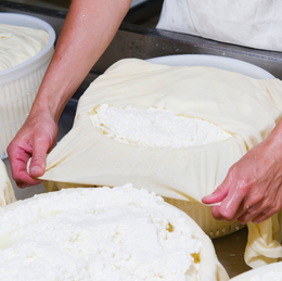 Cheesemaking with Louise Talbot (Part 2) - 11 September