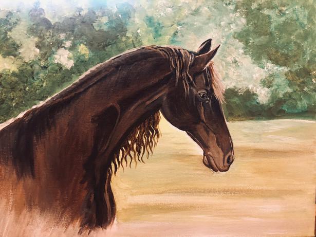 Horse - Commission