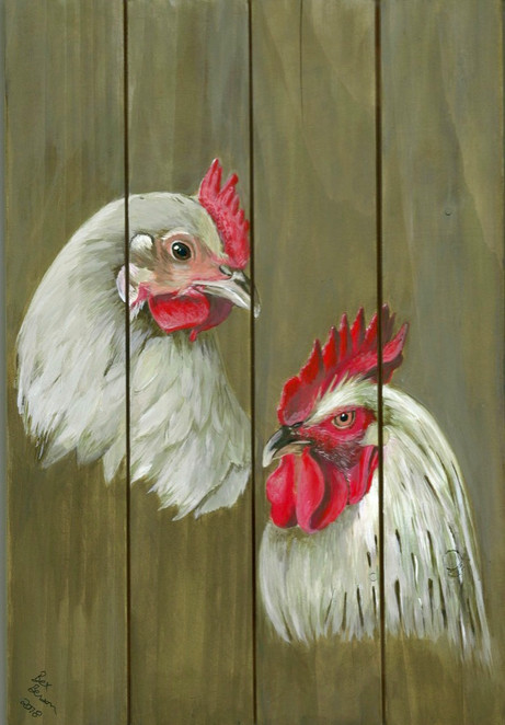 Chickens on wooden pallets