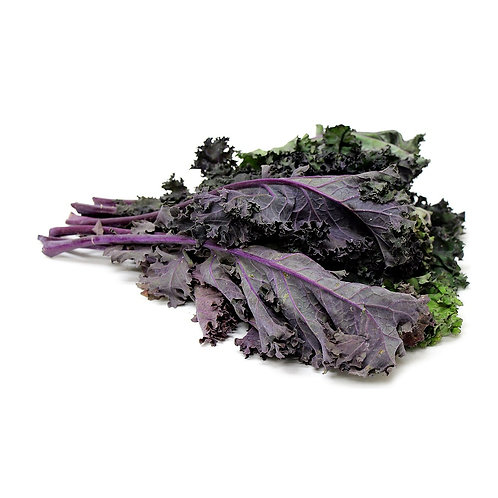 Kale – Olympic Red