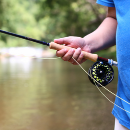 Fly Fishing in Hampshire