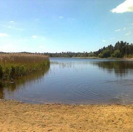 Frensham Little Pond & Great Pond