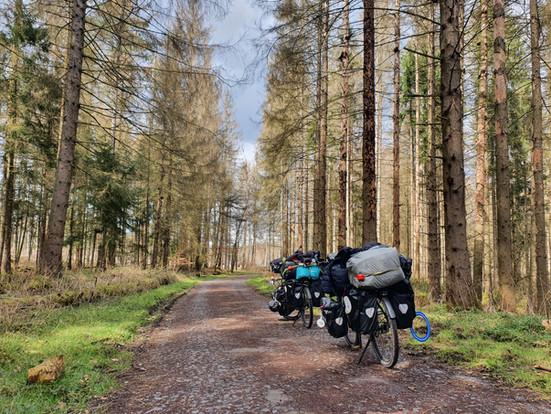 Vom Münsterland bis Spreewald