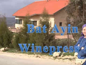Bat Ayin Winepress.JPG