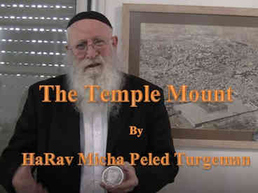 Rav Micha_Temple Mount.JPG