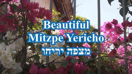 Mitzphe Yericho.JPG