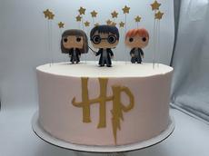 Harry Potter Childrens Cake