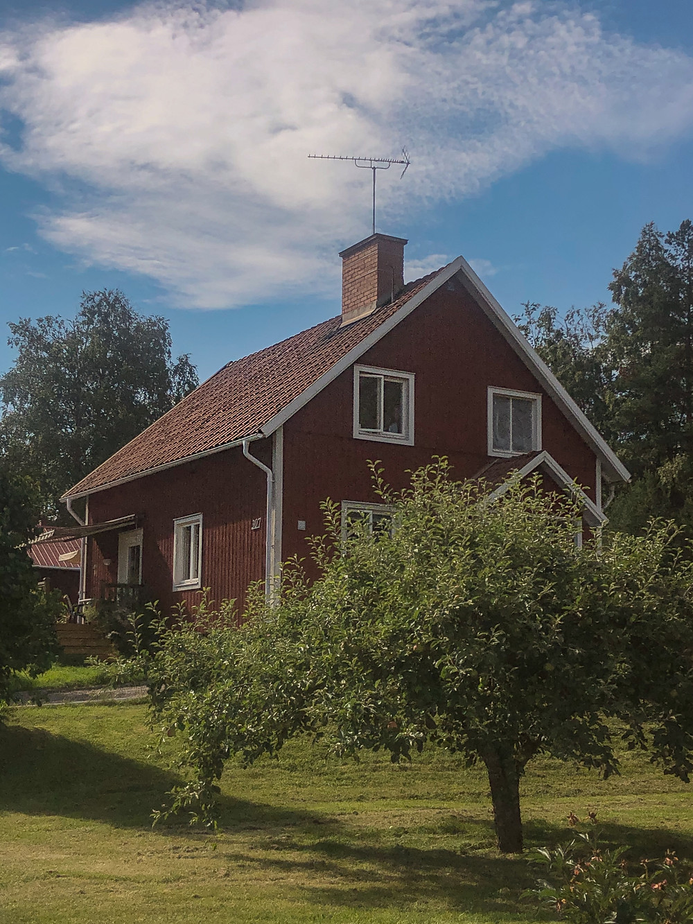 A traditional red, wooden detached Swedish villa against a blue sky with a green lawn and an apple tree obscuring the front door