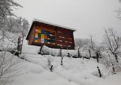 Zimski_počitek