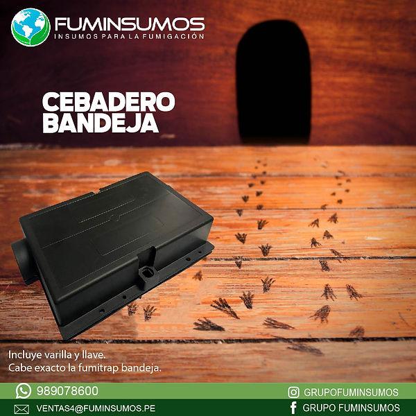 CEBADERO BANDEJA_Mesa de trabajo 1.jpg