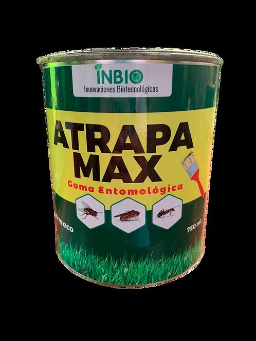 ATRAPA MAX
