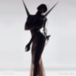 tinashe - joyride - album.jpg