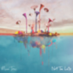 Moon Taxi - Not Too Late - 1.jpg