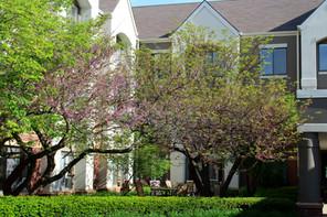 It's courtyard season!