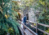 casament-reportatge-pont-fusta.jpg