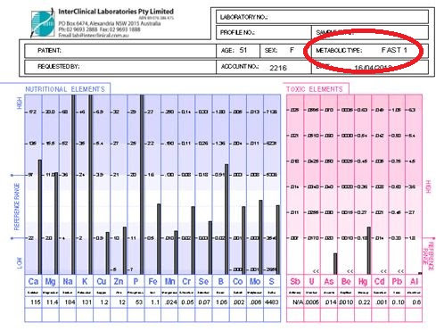 Example of 'Fast' Metabolic Typing on the HTMA