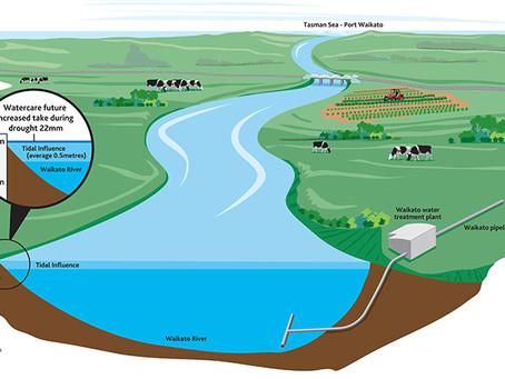 Is the Waikato River a public health hazard due to arsenic contamination?