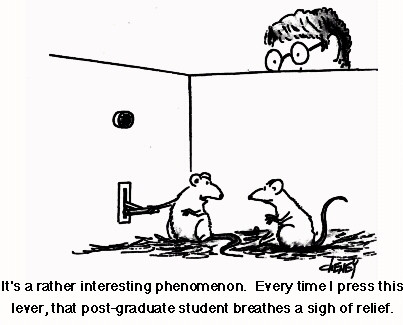 Lab Rats Cartoon