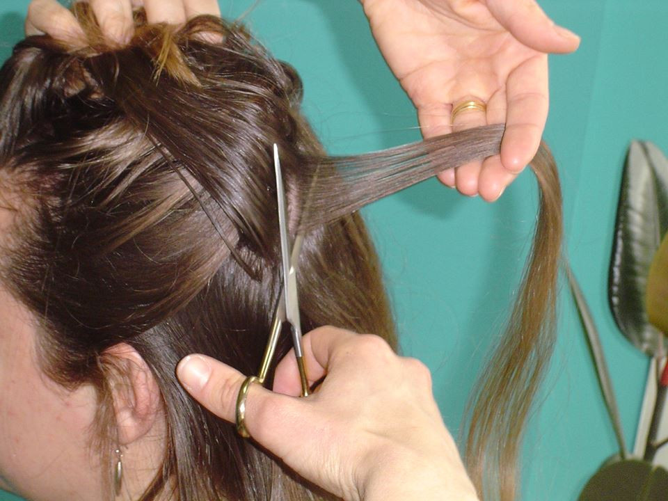How to cut hair for the HTMA test