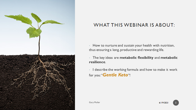 What the webinar is about