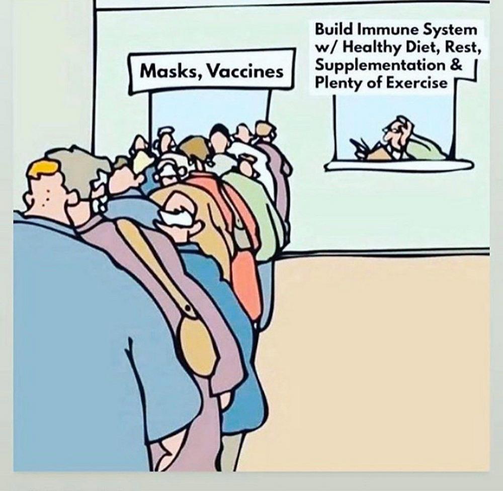 Vaccines or Health Cartoon