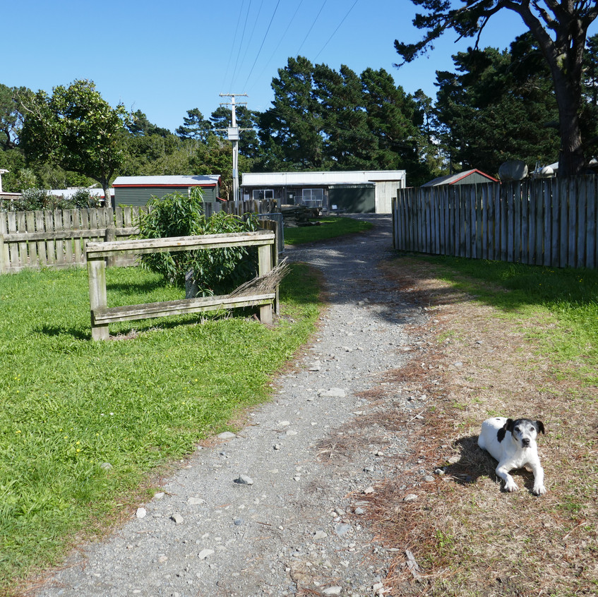 Dropped in on our old friends, the Goodings, for a cuppa and a feed, but no one home.    One very friendly guard dog.