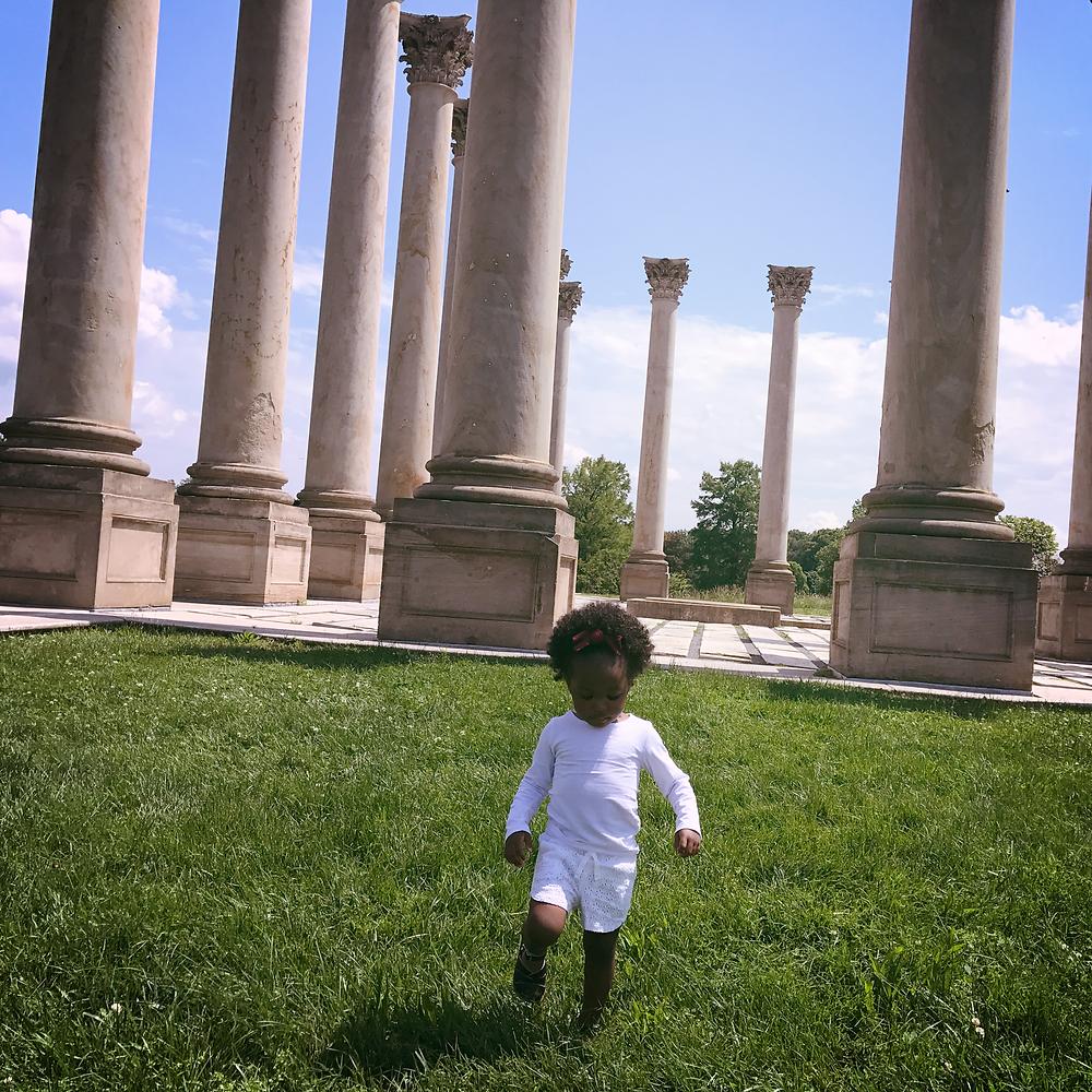 The National Arboretum (Washington, D.C.)
