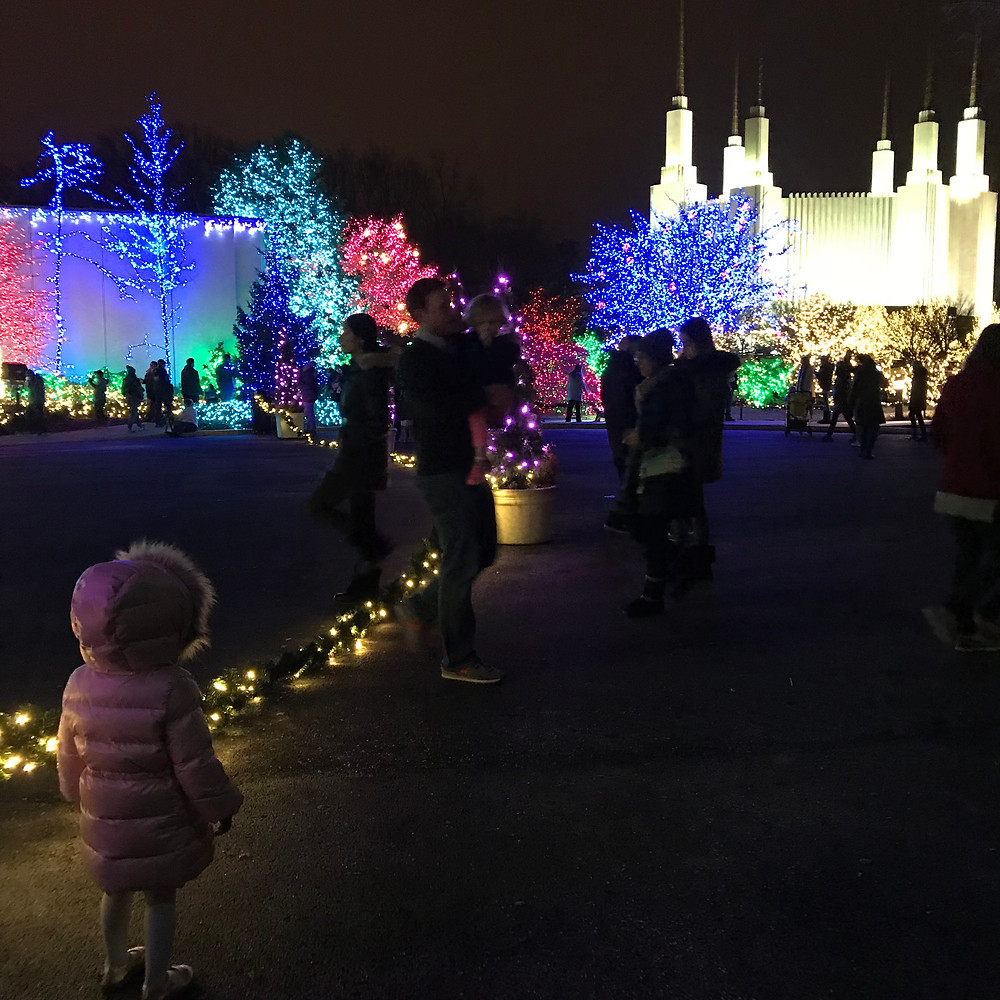 Festival of Lights at The Mormon Temple