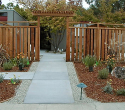 New concrete walkway and patio