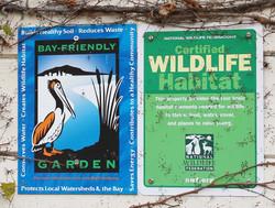 Bay-Friendly Garden Tour and Certif
