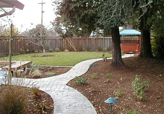 Backyard path - after