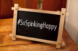 Spinks511