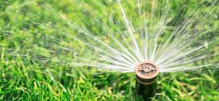 Sod & Irrigation