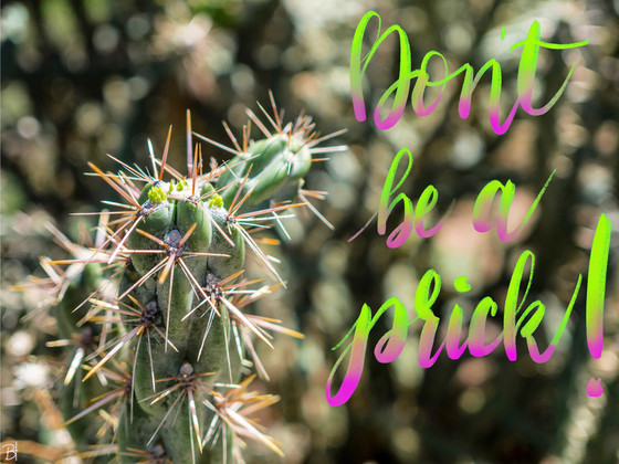 Don't Be a Prick.jpg