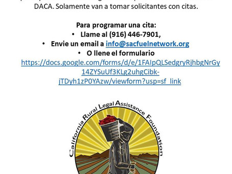 Legal Assistance with DACA Renewals