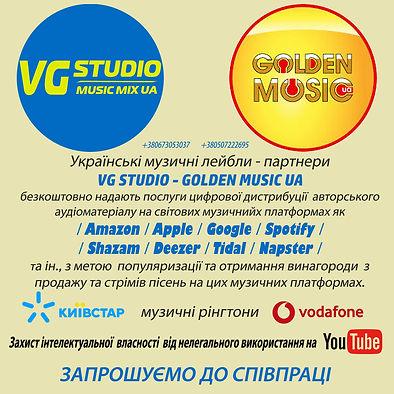 Пропозиція до співпраці VG STUDIO - GOLD