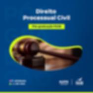 direito processual civil.png