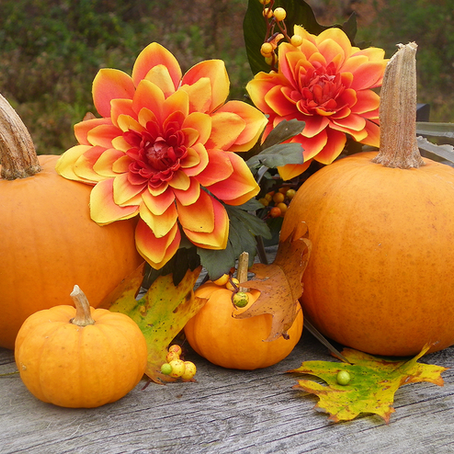 From Flowers to Pumpkins: Our Take on Some Simple Home Decor Upgrades for Sweater Weather.