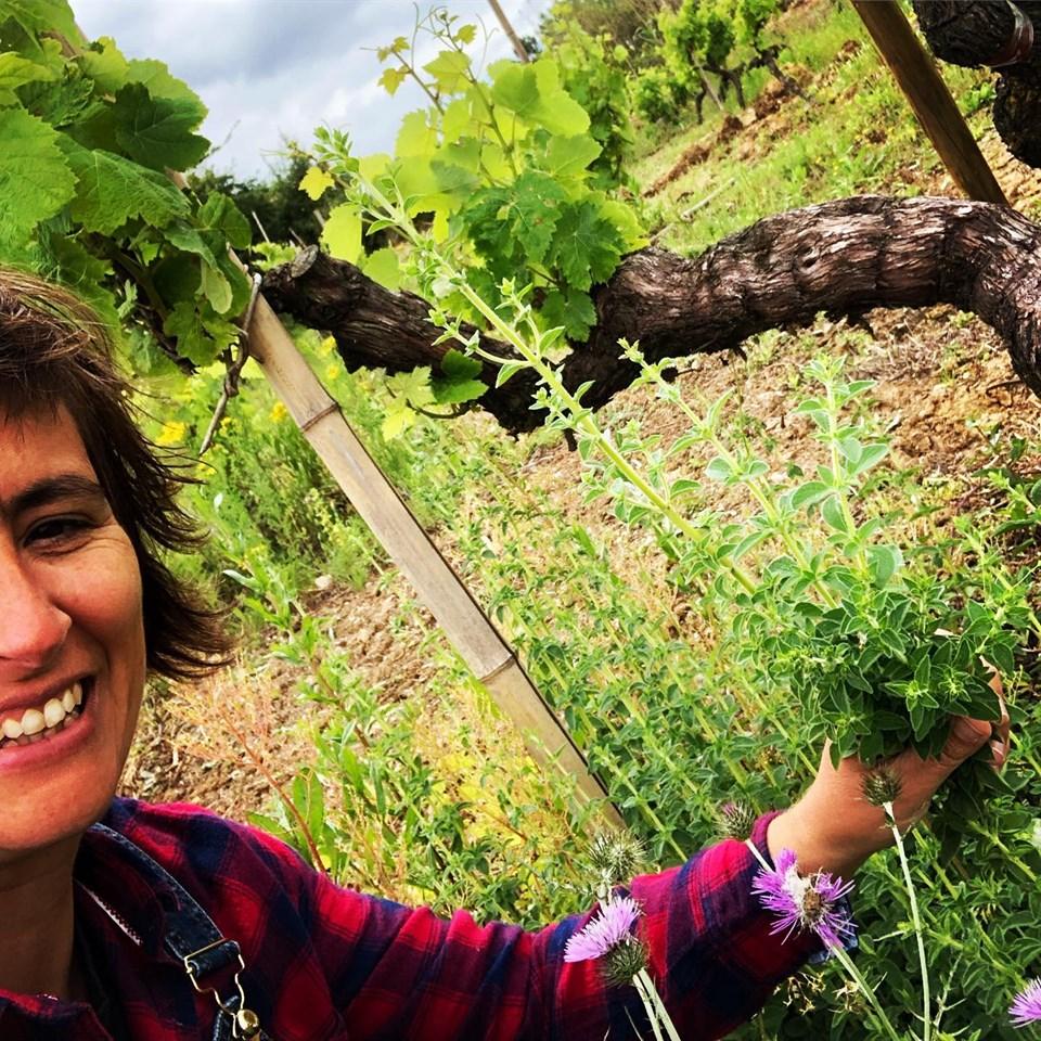 Filipa in de Missão-wijngaard
