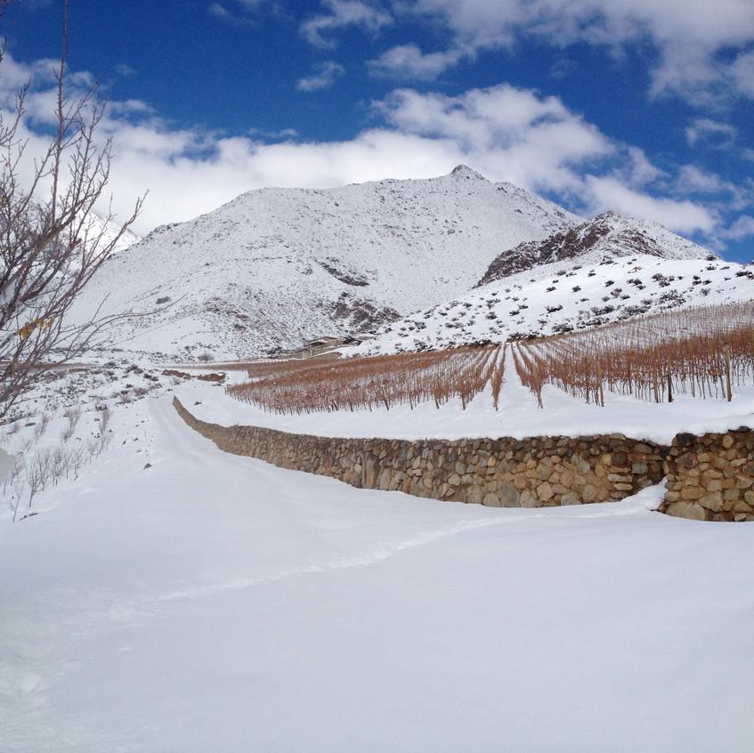 Viñedos de Alcohuaz in de sneeuw