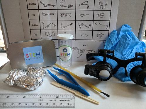 Deluxe Owl Pellet Dissection Kit