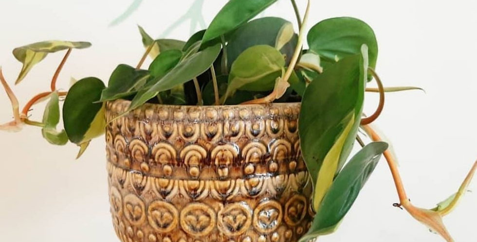 Handmade Multi-colour Flowerpot