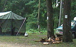 2005-06-20-firewood.jpg