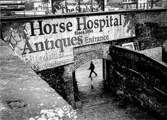 Horse hospital.jpg
