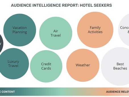 Audience Intelligence Report: Hotel Seekers
