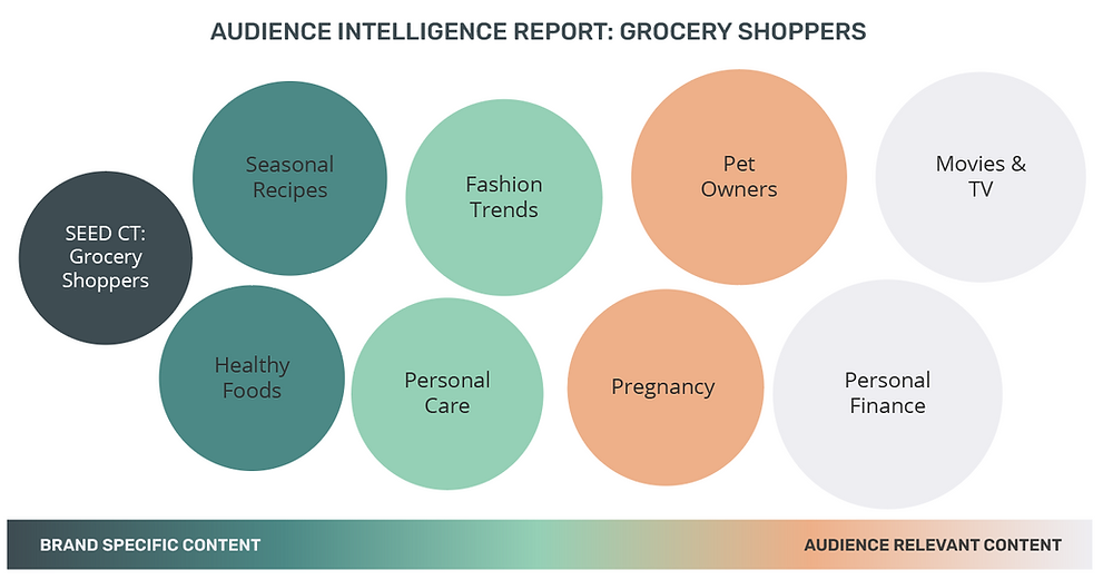 Grocery Shoppers Audience Intelligence Report Cookieless Targeting Online Advertising