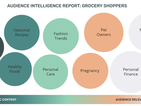 Audience Intelligence Report: Grocery Shoppers