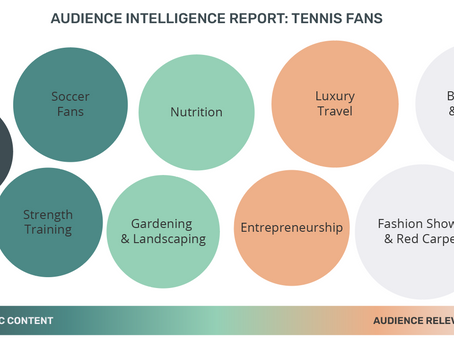 Audience Intelligence Report: Tennis Fans